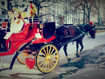 manhattan horse and buggy