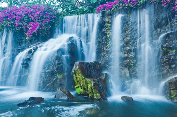 Guided Kayak Waterfall Tour Kamokila Village Kauai Hawaii Real Family Trips