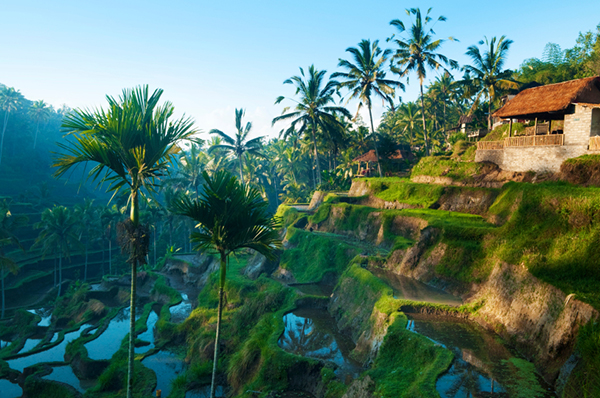 beautiful bali family vacation