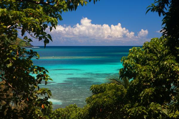 tropical island fiji family vacation