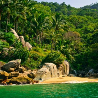 beaches of puerto vallarta family vacation