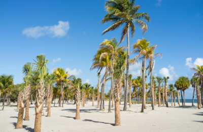 great family vacation miami florida, fun kid activities