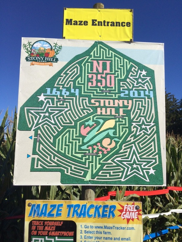 fall fun with kids, corn maze, apple picking