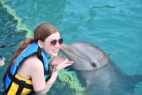 Dolphin-5