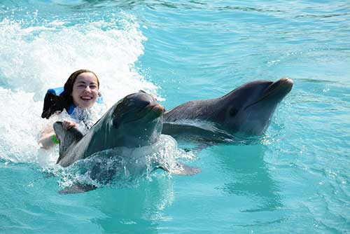 Dolphin-7
