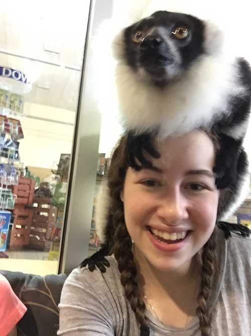 Jungle-Island-Lemur-1